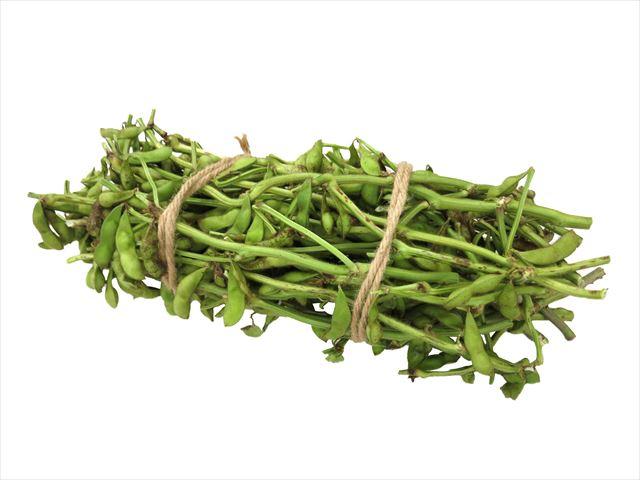 黒大豆は枝付きで販売されています