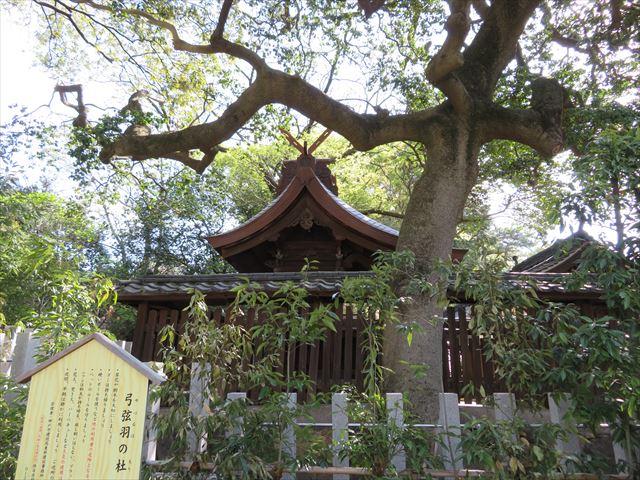 銅板屋根が真新しい松尾社