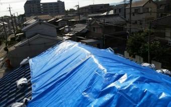 崩壊した大棟を中心にブルーシートを架けて屋根を雨漏りから防ぐ