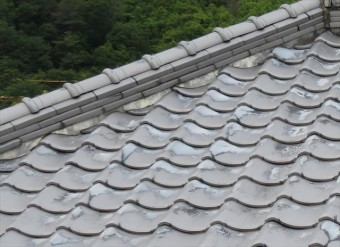 棟内部の葺き土と熨斗瓦の縁が切れる理由は、じわじわ浸み込み始める雨水は、徐々に棟内部の葺き土を緩めてその一部を洗い流し、接着効果が落ちて行くことが原因