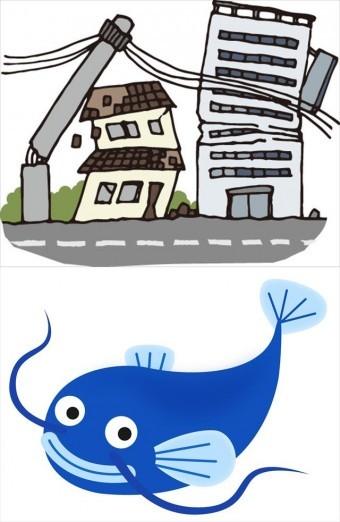 都市直下型の大阪北部地震では、近畿圏の広い地域に被害が生じ、多くの屋根が損傷した