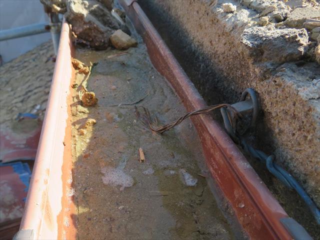 茨木市の地震で瓦屋根の棟が崩れたお宅では、軒先から滑り落ちた葺き土は、軒樋を埋め尽くすほどの量で、雨水を吸い込んで更に重量が増しているので破損が心配になる。