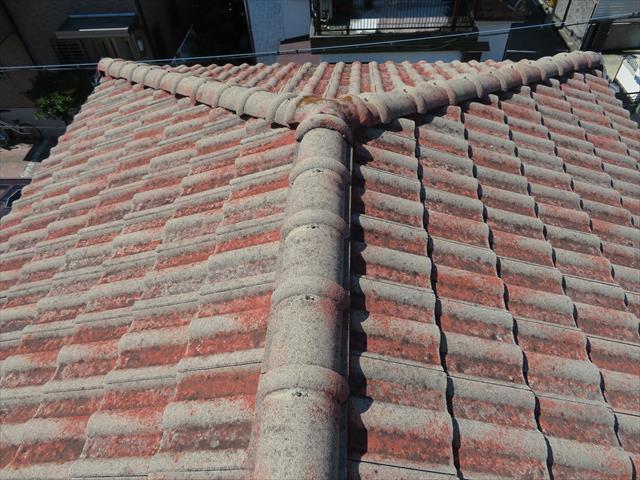 雨漏り箇所の直情だけでなく、屋根全体をよく観察して点検します