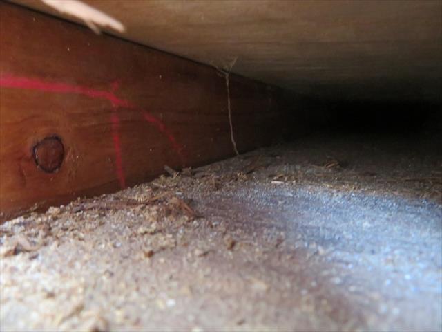 FRP防水内部は幸運にも木材が腐食していなかった