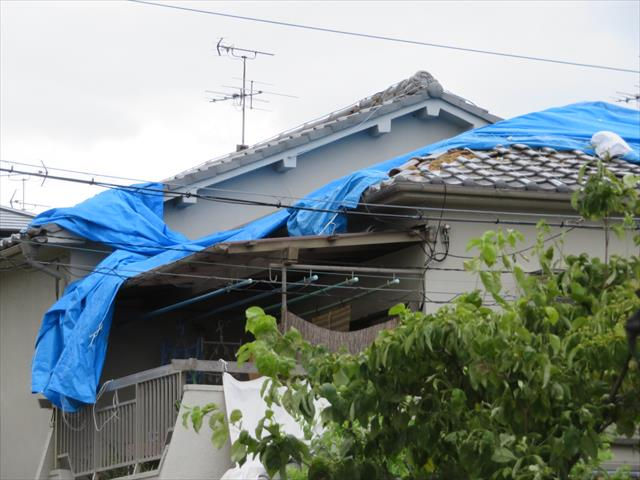 地震後に張られたブルーシートが台風12号で飛ばされたお宅が目立ちます