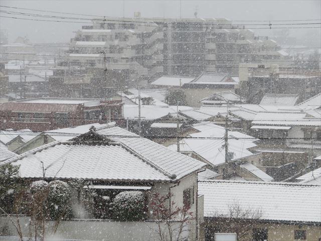 放射冷却後の晴天の寒さ、冷たい雨が降り注ぎ、雪の一歩手前の寒さ、晴れているが氷点下を超える寒さ、雪が降り積った状態の寒さ、降った雨が凍り付く寒さなど、屋根の厳寒状況は千差万別です。