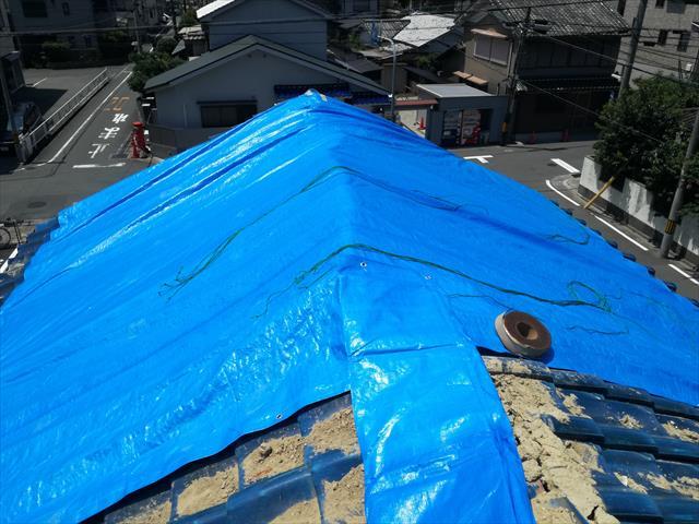 茨木市で大棟が崩れた屋根には棟だけ包みますが、平瓦も相当ずれてしまっているので、屋根全体を覆うようにブルーシートを架けます。