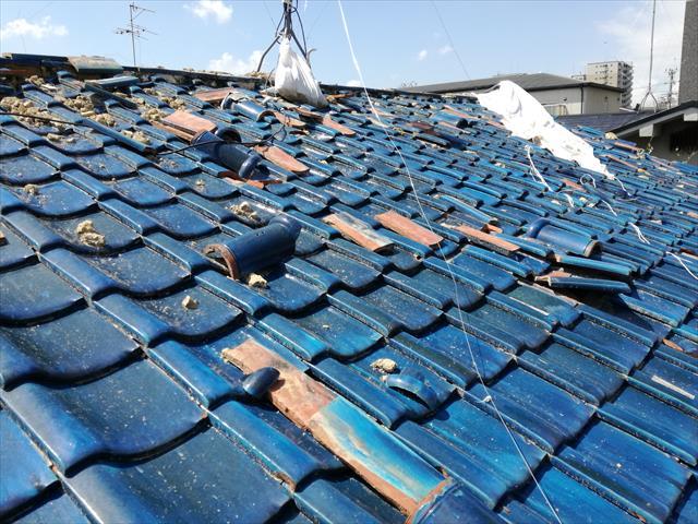 大阪北部地震で被災した屋根をブルーシートで雨養生していたが台風21号で全部剥がされた