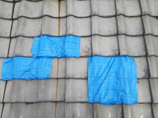高槻市で隣家から飛んできた瓦で、自宅の屋根瓦が割れてしまったお宅は、本格修理を待つ間の雨漏り養生として、ブルーシートを張って急場をしのいだ。