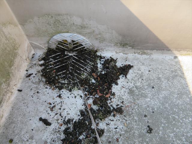 ベランダやバルコニーの排水口は適宜掃除をしておけば雨漏りリスクが相当下がる