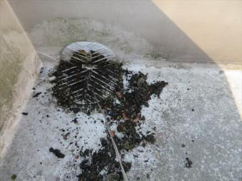 尼崎市で陸屋根のドレンの清掃を怠った結果、プールのように水が溜まり、雨漏りしてしまったお宅がありました。