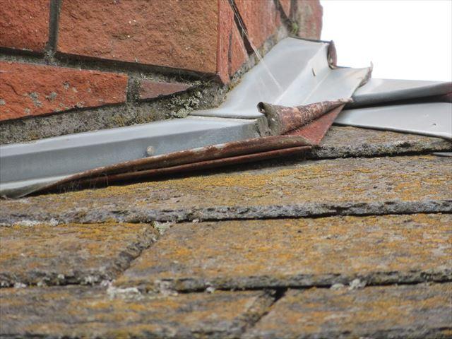 屋根の上の水はけが悪い期間が続くと苔や藻類が生えはじめることがしばしばある