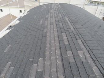 台風21号の強風でアスファルトシングル屋根材が剥がれたマンションの大屋根で被害状況の確認をした