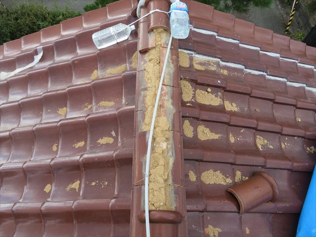 大屋根および下屋ともに切妻形状の屋根は、施釉和型瓦で葺き上げられていますが、下屋の棟瓦(冠瓦)が剥落たようです。