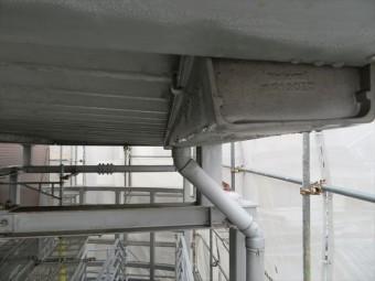 共用階段の大屋根の軒樋が逆勾配になっている事で、恒常的に雨水が溜まりっぱなしになり、ボウフラが湧く温床になっていた