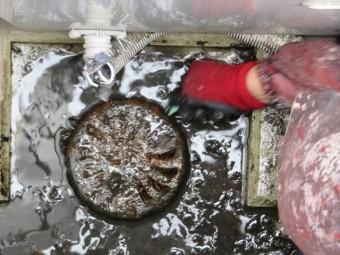 高圧洗浄作業で追い込まれた汚泥はドレンパンに集まるので、手作業で救い上げて取り除きます