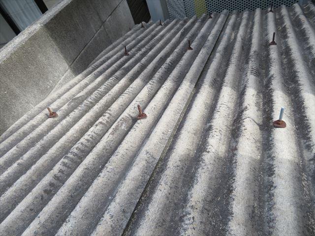 給水ポンプは電気設備なのでスレート屋根でポンプと制御盤が守られている