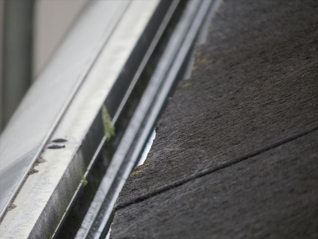 長年の垢を蓄えた屋根の表面は苔や藻類で汚れていて、濡れると上るのは危険な状態になる