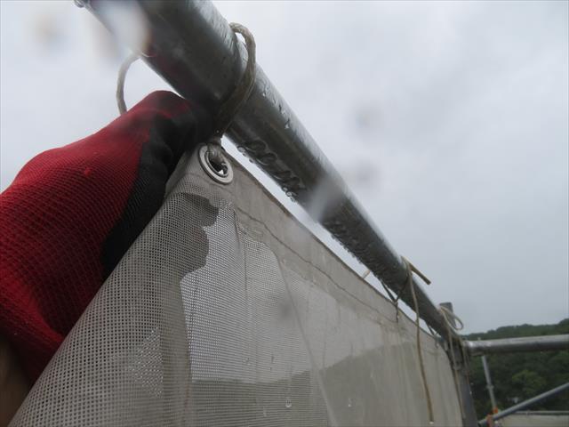 このメッシュシートは全部剥がす必要はありません。最上段から少し下げて、中段域は風の通り道を作れば十分です。