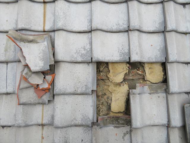 ブルーシートで養生していた瓦を差し替え修理する時、内部の葺き土をよく観察しておくことがポイントです。黄土色なら乾燥している健常、赤茶色なら雨水が回っている証拠。状態に因って修理が必要です。