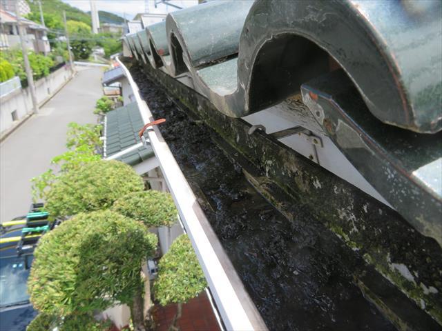 実際の軒樋内部を確認すると汚泥が溜まり、珪藻類も生じていることが解かる