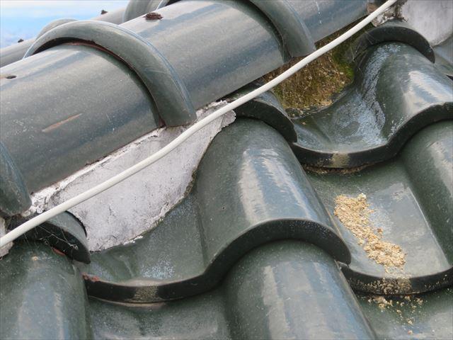 漆喰は面戸から棟の葺き土が洗い流されるのを防いでいる