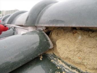 面戸漆喰を剥がすと乾燥した葺き土が露出しますが、漆喰と葺き土の含水率の違いを重要視します