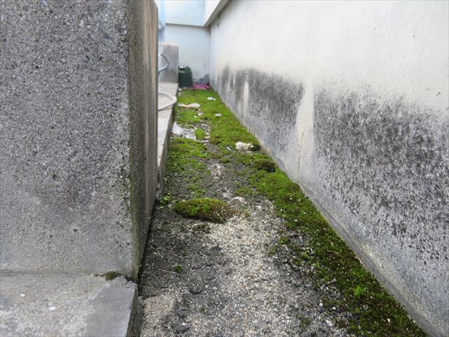 陸屋根屋上の雨漏りは、雨水を滞留させる物を除去すると症状が改善される場合がある