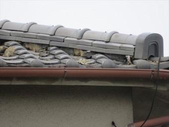 冠瓦や熨斗瓦が雨水を流し落として水切りされますが、面戸漆喰がほとんど欠損すると雨漏りは避けられません。