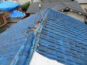 大阪北部地震で被災した瓦屋根に登ると完全に大棟が崩れている様子がはっきりとわかります