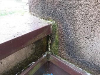 35年経過したモルタル掻き落とし外壁に黒ずみや緑化が生じるのは、水分の滞留時間が長いことを示し、乾燥と湿潤を繰り返して、剥がれ落ち易い脆弱な外壁になってしまいます。