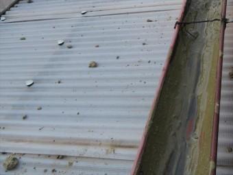茨木市の地震で瓦屋根の棟が崩れたお宅では、軒先から滑り落ちた葺き土は、軒樋を埋め尽くすほどの量でした。