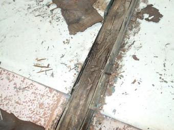 桟の部分の板金も外すと芯木はボロボロ